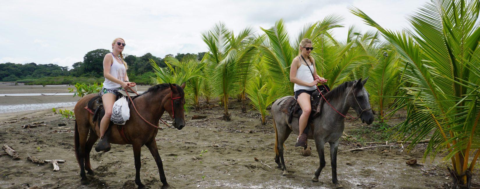 Horseback Rides